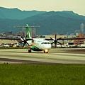 濱江街180巷拍飛機022.jpg