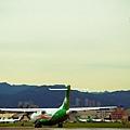 濱江街180巷拍飛機025.jpg