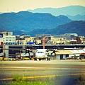 濱江街180巷拍飛機030.jpg