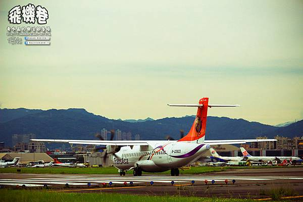 濱江街180巷拍飛機032.jpg