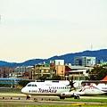 濱江街180巷拍飛機031.jpg