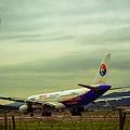 濱江街180巷拍飛機035.jpg