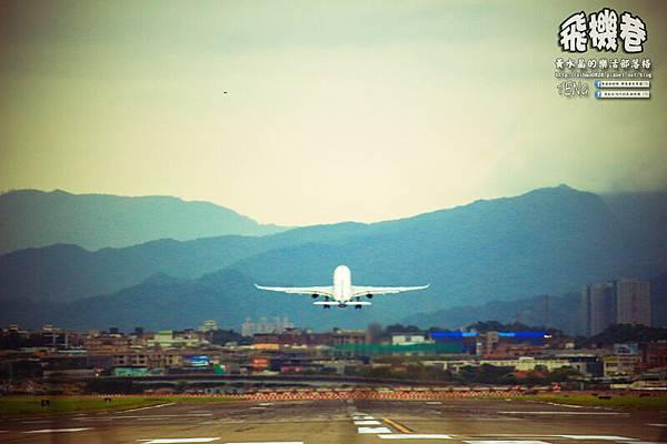 濱江街180巷拍飛機037.jpg