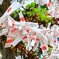 波上宮神社058.jpg