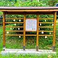 瑞居渡假飯店054.jpg