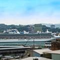後山海景咖啡024.jpg