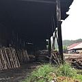 馬來西亞霹靂州十八丁炭窯_180912_0018.jpg