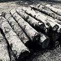馬來西亞霹靂州十八丁炭窯_180912_0047.jpg