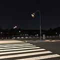 日本皇居_181112_0053.jpg