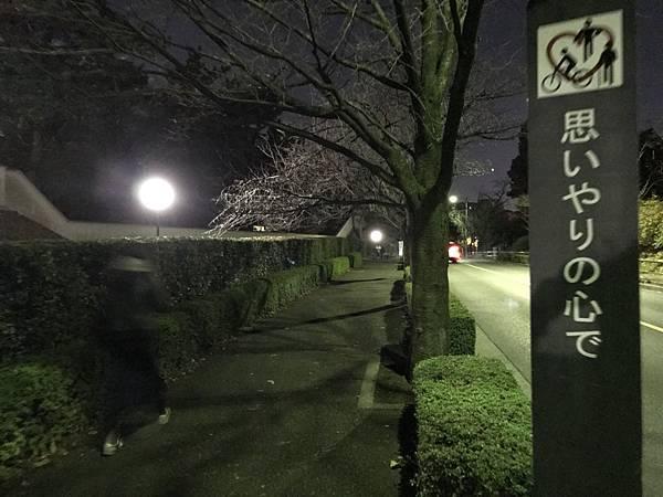 日本皇居_181112_0067.jpg