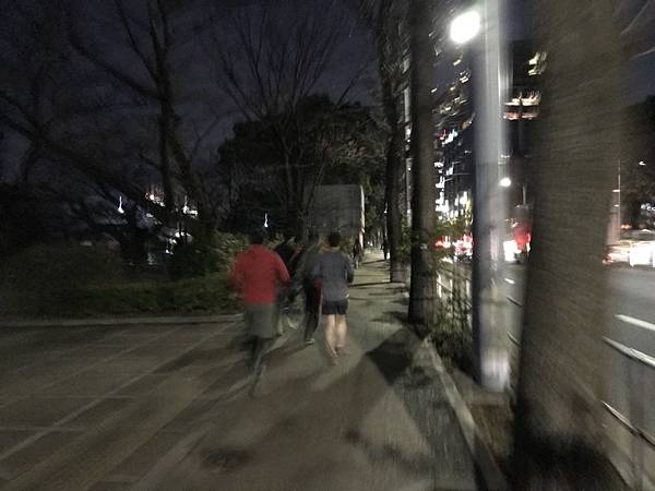 日本皇居_181112_0072.jpg