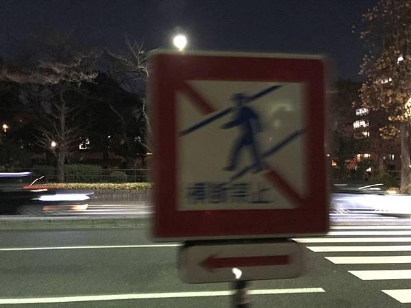 日本皇居_181112_0070.jpg