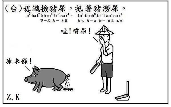 豬澇屎.JPG