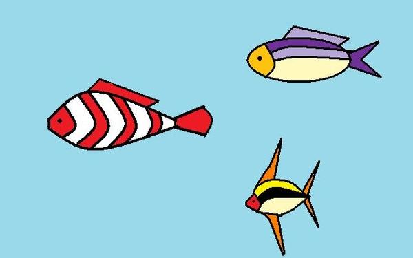 熱帶魚.jpg