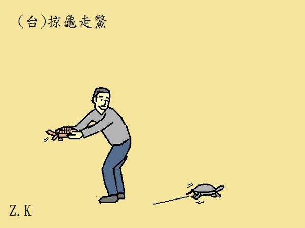 掠龜.jpg