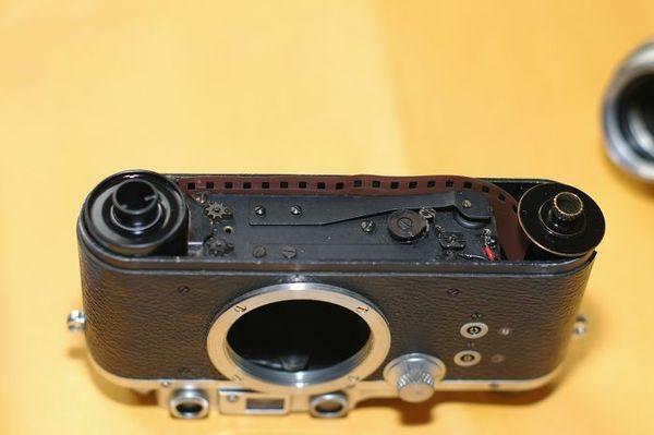 IMGP5607.jpg