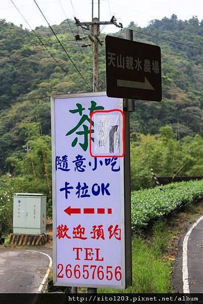 濃濃「鄉」愁的坪林 (43).jpg