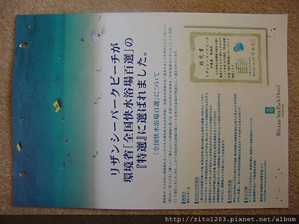 EMBA 小眼睛貓頭鷹 (3).JPG