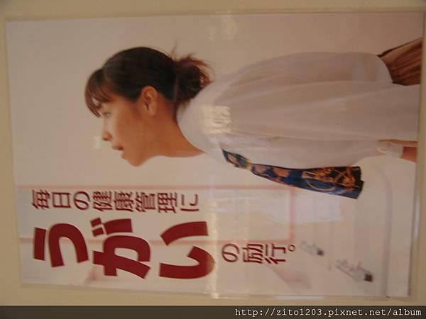 EMBA 小眼睛貓頭鷹 (42).JPG