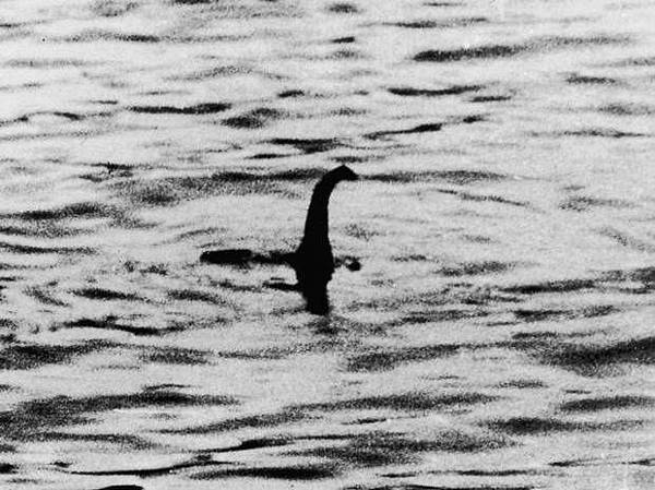 尼斯湖水怪(Loch Ness Monster )