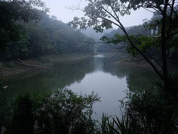 雨後的湖畔.jpg