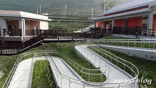 樟湖森林小學