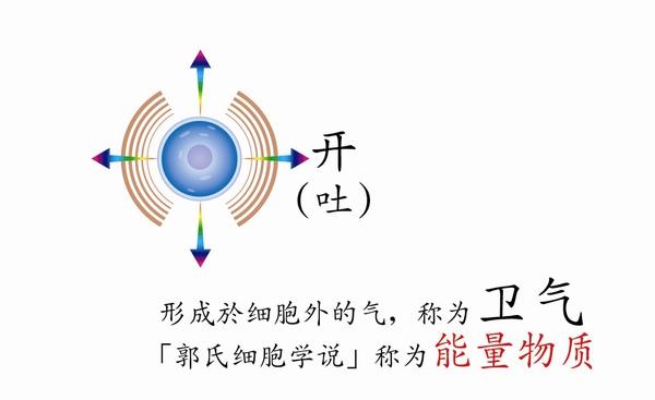 圖6-3.jpg