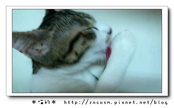 DSC00789.jpg