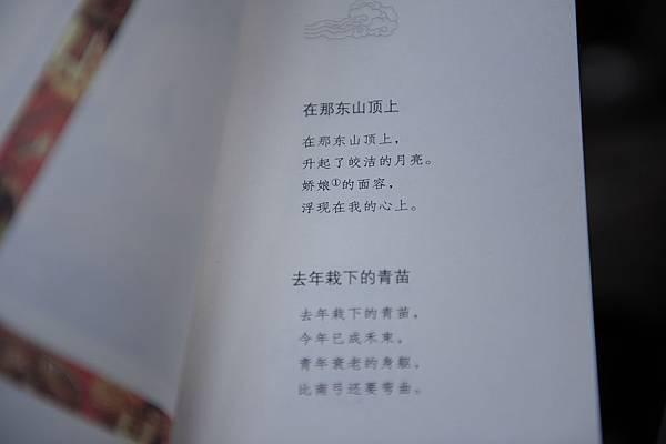 DSC_7382
