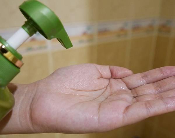 飛柔零矽靈洗髮精推薦11