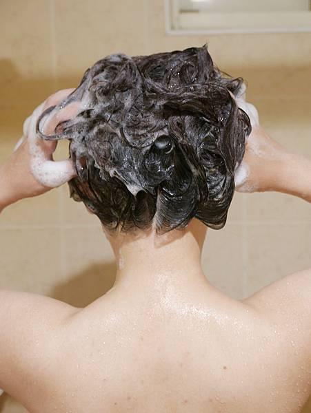 飛柔零矽靈洗髮精推薦15
