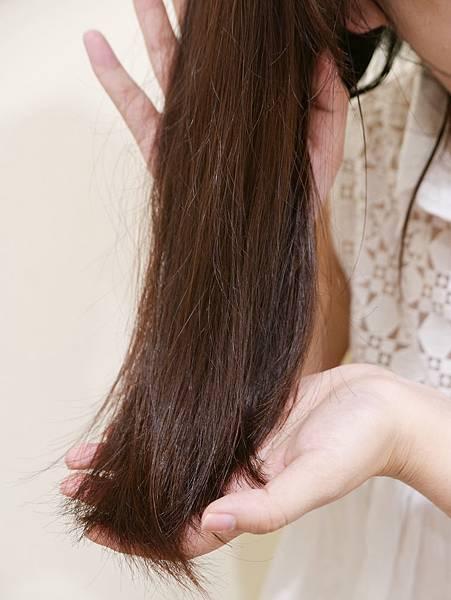 飛柔零矽靈洗髮精推薦24