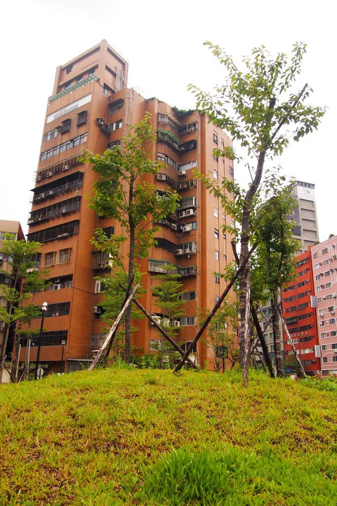 城市中的綠地過於稀少,大猩猩綠色游擊隊希望能開放公有地讓民眾認養,以增加綠地面積