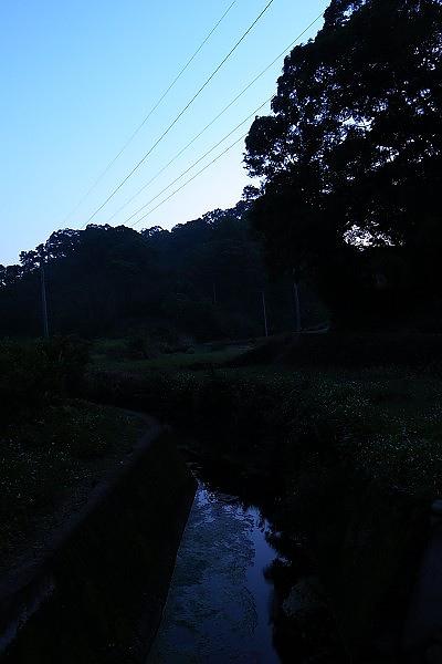 2010-0430-1.jpg