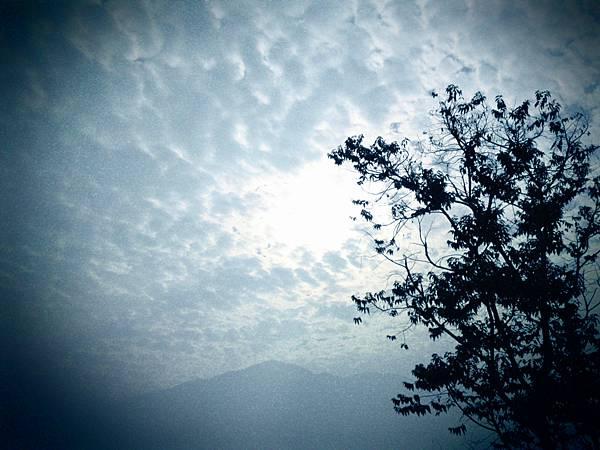 P03-03-09_08.05[01].JPG