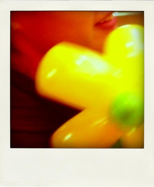 PICT0132+-pola.jpg