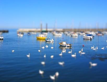 boats-mid.jpg