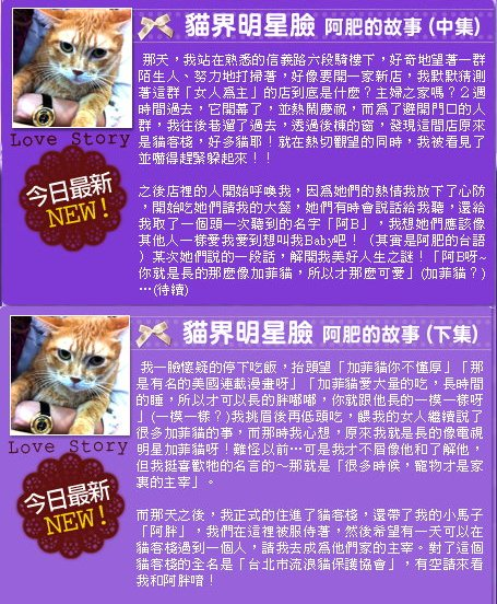 Story 15 16 17-2.jpg
