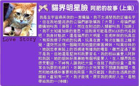 Story 15 16 17 -1.jpg