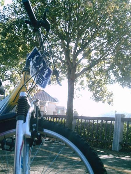 東豐騎腳踏車