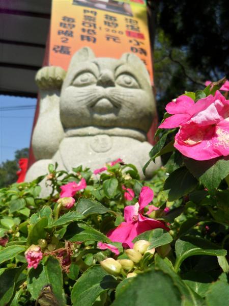 20110227東勢林場