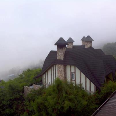 南投清境普羅旺斯20120702