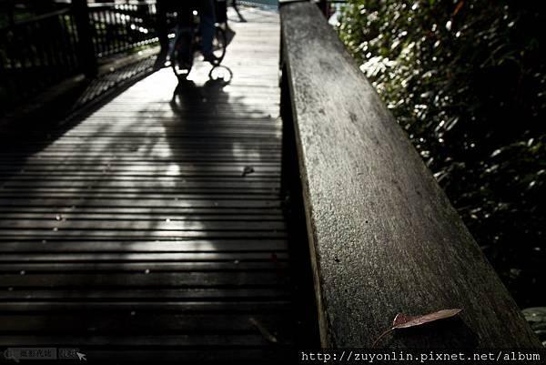 2011-11-19日月潭day2-1 110.jpg
