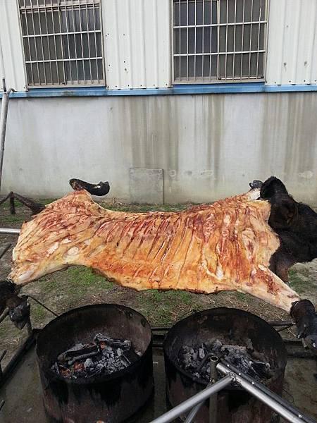 烤 全 豬