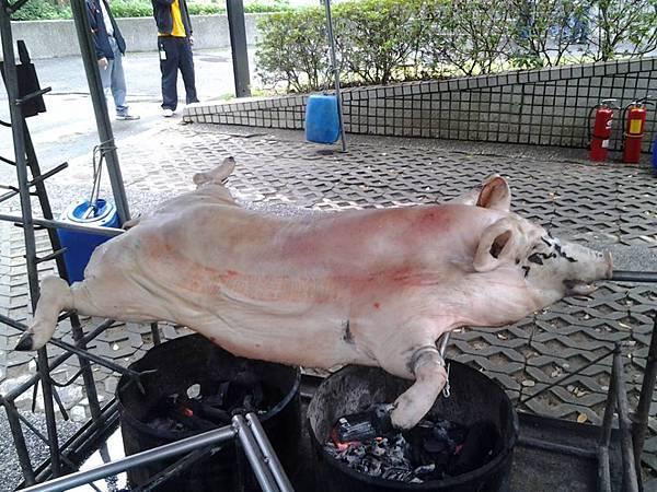 台灣提前預訂就可以感受 烤全豬