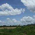 路旁的鄉野風景