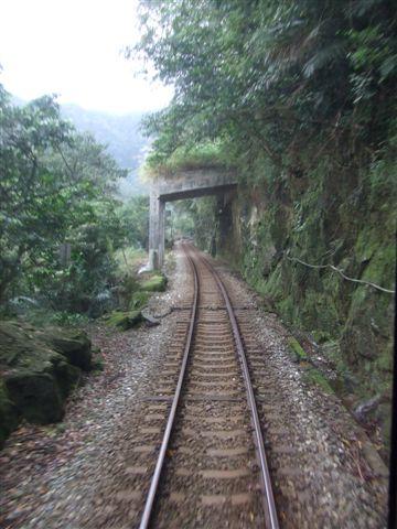 日本遊客最愛的一條台灣鐵道_平溪侯硐區間車