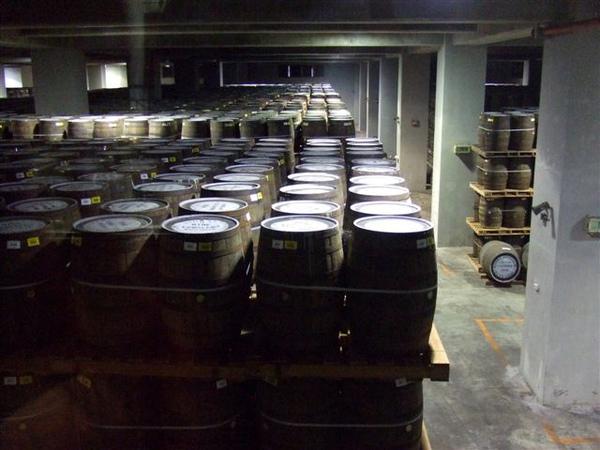 一整個倉庫都是釀酒桶