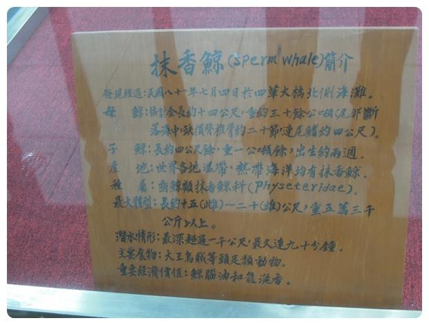 四草 (12)