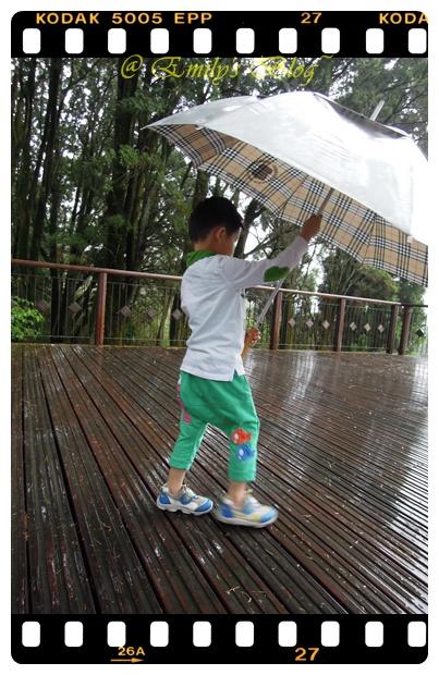 5。你看看,這樣的風雨有沒有大 @@